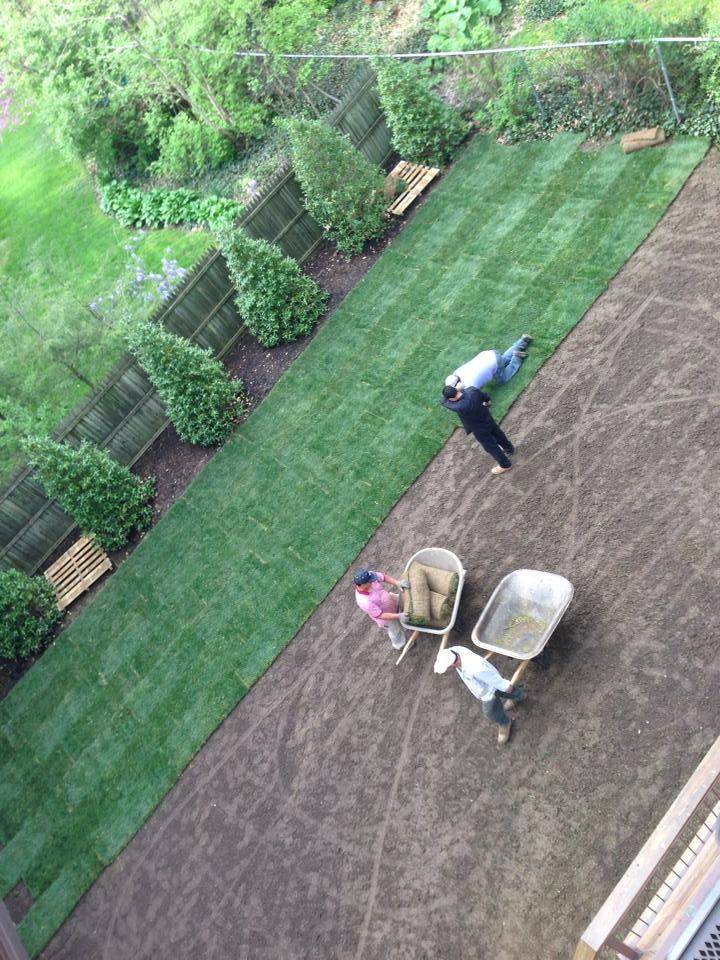 Lawn Maintenance - Gregs Landscaping