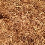 Mulch: Cedar Mulch