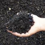 Recycled Stone: Asphalt Millings