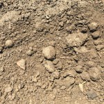Topsoil: Custom Blends