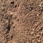 Topsoil: Screened